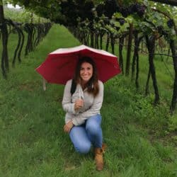 Diario di Vigna: da Salerno a Salorno