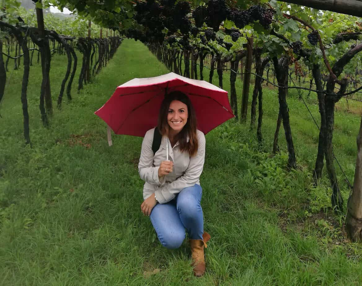 Viviana tra le vigne