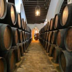 Lo Sherry: in Andalusia alle origini dei vini liquorosi