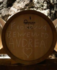 Fiorduva, è nato Andrea. Botte di Fiorduva nella cantina Marisa Cuomo