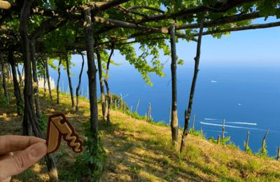 Cantine Marisa Cuomo tra i filari ed i terrazzamenti della costiera amalfitana