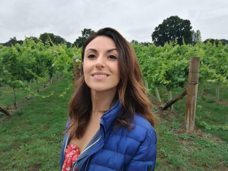 Vigne inglesi del Sussex