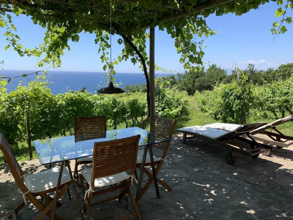 Vista del Mar Tirreno dall'Azienda Agricola San Giovanni