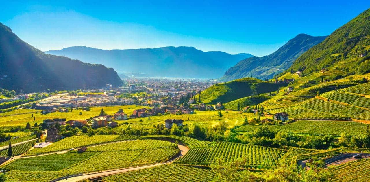 Vigneti in Trentino