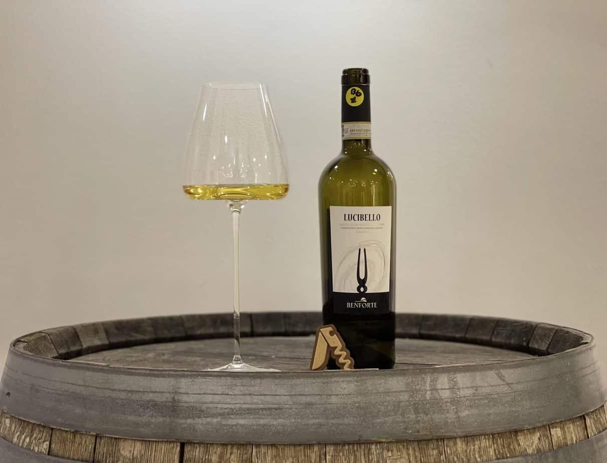 """Benforte - Verdicchio dei Castelli di Jesi Classico Riserva """"Lucibello"""", 2017"""